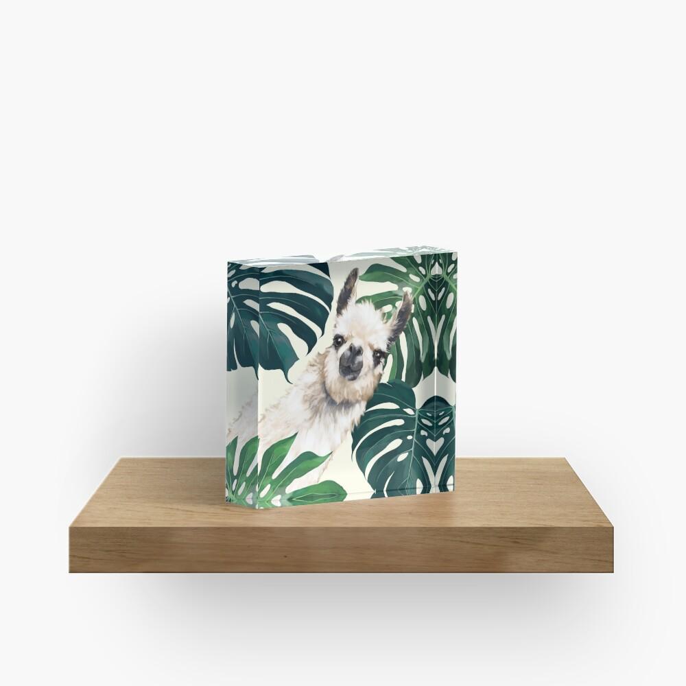 Sneaky Lama im tropischen Monstera Acrylblock
