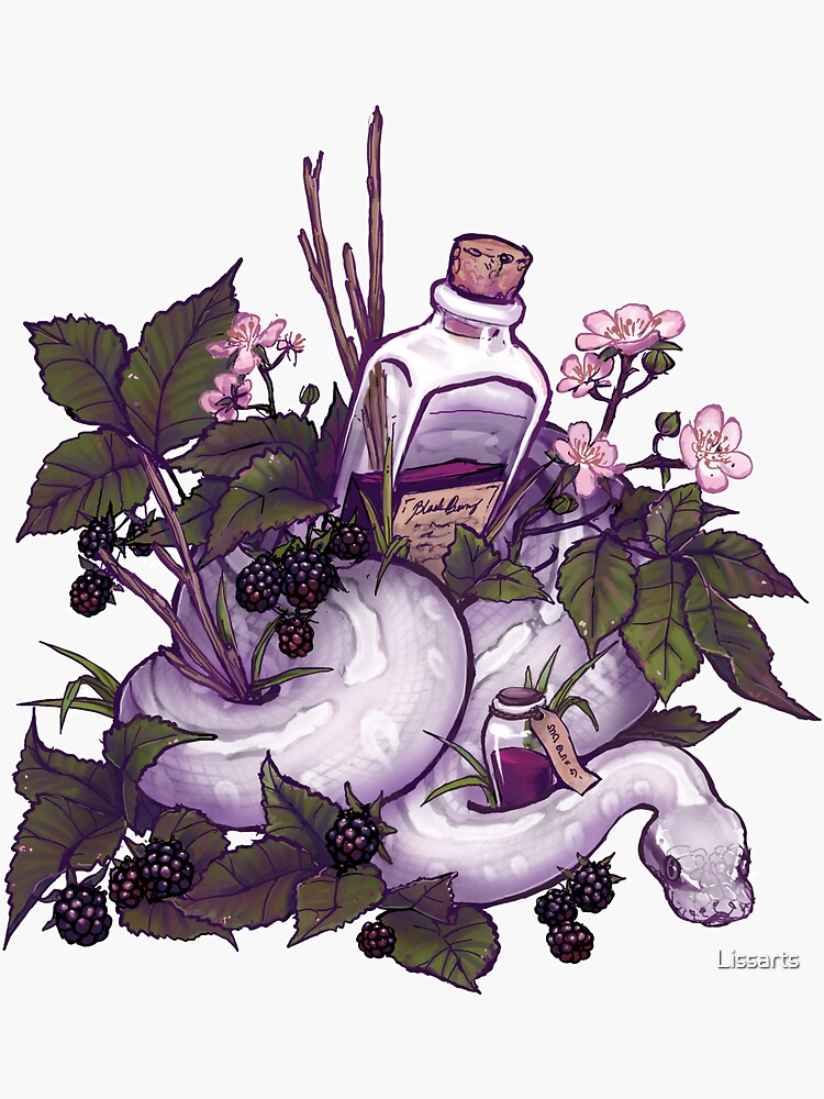 Blackberry potion by Lissarts