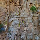 St Vrain Canyon Wall by Bo Insogna