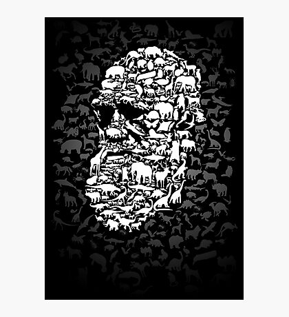 Darwin; Endless Forms Photographic Print