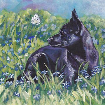 Australian Kelpie Fine Art Painting by lashepard