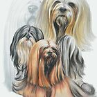Lhasa Apso Medley by BarbBarcikKeith