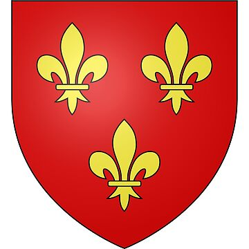 French France Coat of Arms 13344 Blason ville fr Lavardin Loir et Cher by wetdryvac
