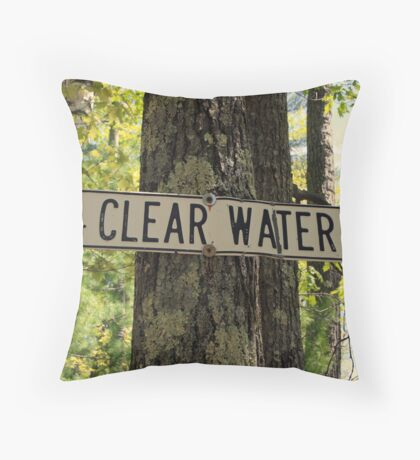 Clearwater Road Throw Pillow