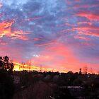 Panoramic Sunrise by Roz McQuillan