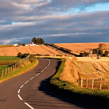 Winding Road Across the Golden Fields, Aberdeenshire, Scotland by Photograph2u