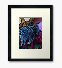 Black Eyed Susan Framed Print