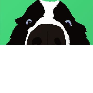 Cute Border Collie Painting - Cute Dog Art - Gift For Dog Lovers by Galvanized