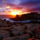 Sunset Sky ... by Angelika  Vogel