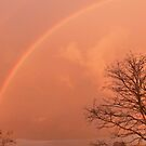 Late Afternoon orange glow & very high Rainbow. Mt. Pleasant.   by Rita Blom