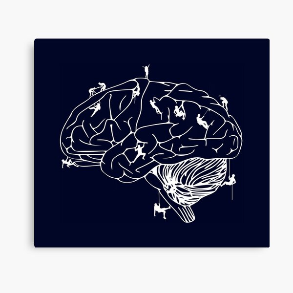 Climbing On The Brain Canvas Print