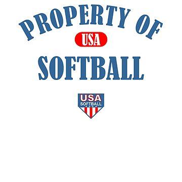 Usa Softball Design American Flag Design For Baseball Softball Player Patriotic by kirillpanteleev