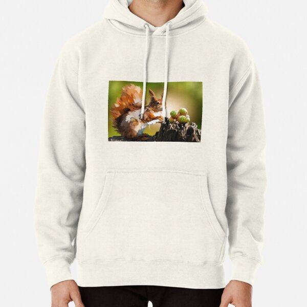 It's squirrel time! Pullover Hoodie