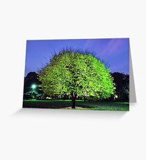 Fluoro Tree Greeting Card