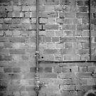 The Wall by Frank Yuwono