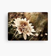 Flower Grunge Canvas Print