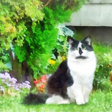 Black and White Cat by Flowers by SudaP0408