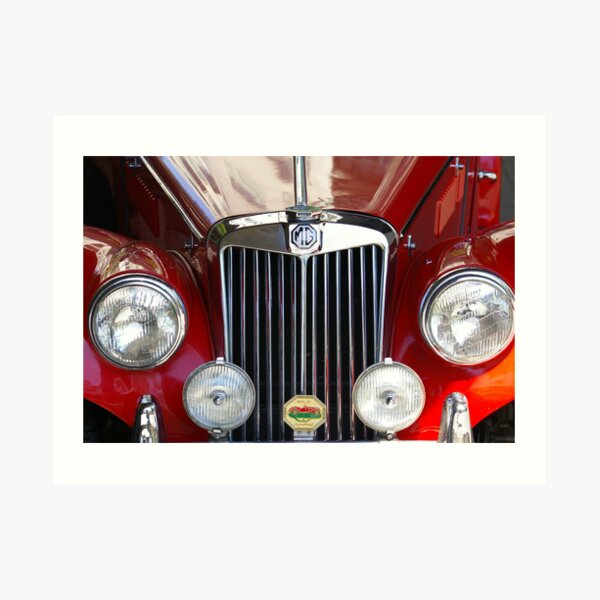 Grille Power (Just Like The Spice Girls Said!) Art Print