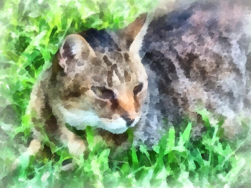 Tabby Cat Closeup by Susan Savad