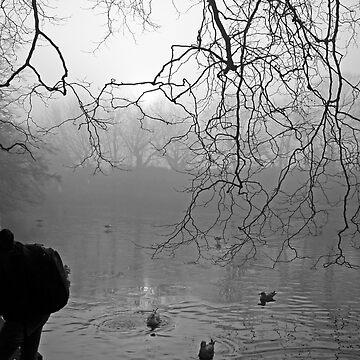 Fog at St Stephen's Green, Dublin by EstherMoline