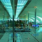 Dubai International Airport Terminal by Bryan Freeman