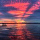 Sarasota Sonnenuntergang von Brent Roucheau