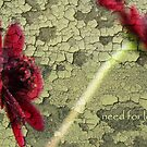 need for love by Kasia Fiszer