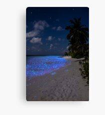 Fluorescent plankton in the Maldives - Indian Ocean Canvas Print