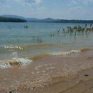 Lake Blue Ridge by abryant