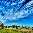 Arboreal Exhalation - Western NSW - Australia von Bryan Freeman
