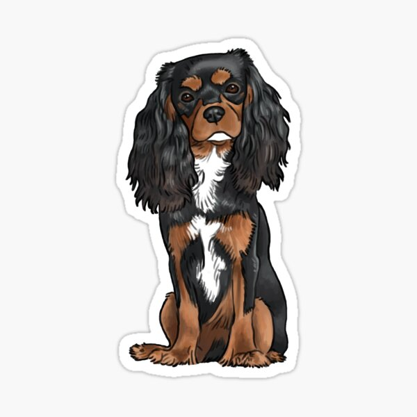 Cavalier King Charles Spaniel - Black and Tan Sticker