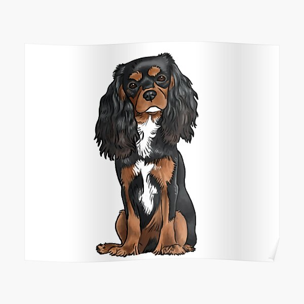 Cavalier King Charles Spaniel - Black and Tan Poster