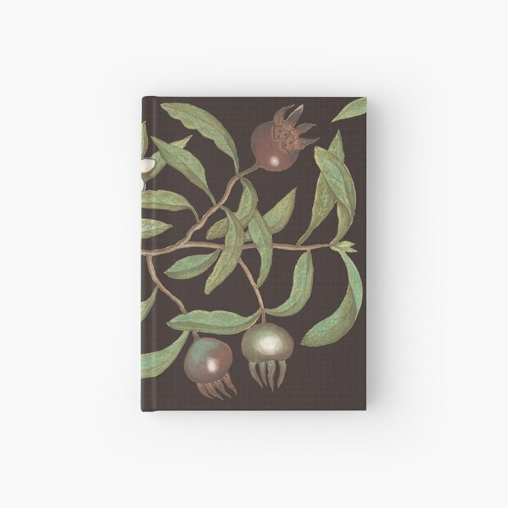 Medlar Fruit Hardcover Journal