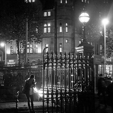Night scene at Trinity College, Dublin by EstherMoline
