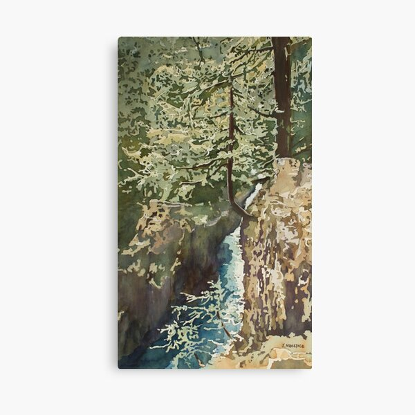 Hanging Out at Opal Creek Canvas Print