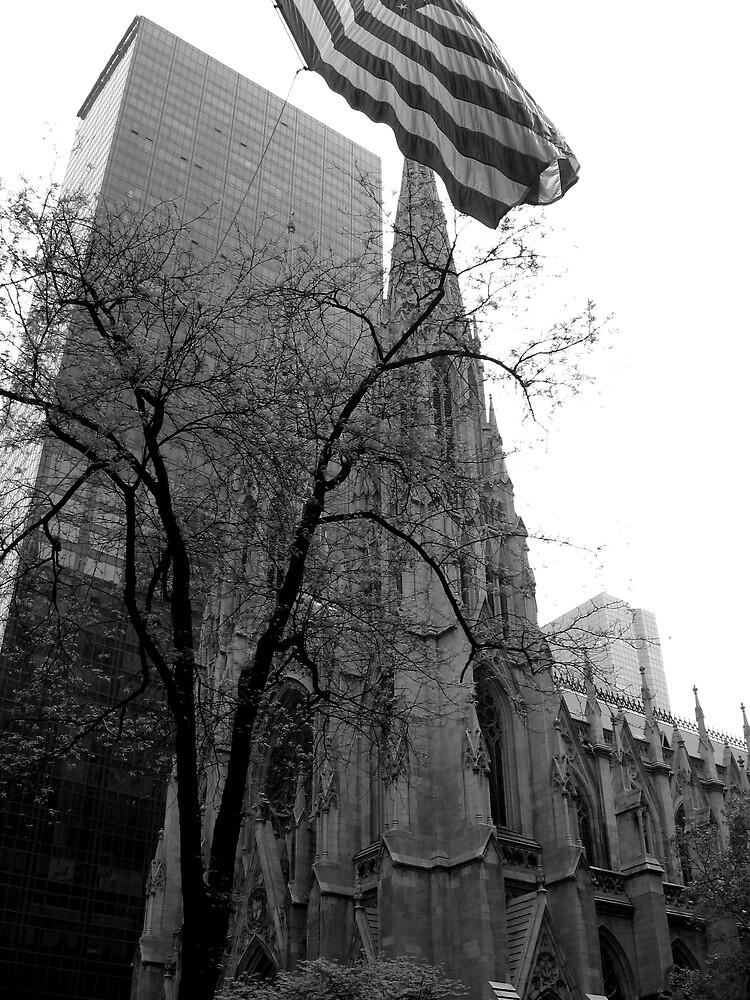 St. Patrick's Cathedral - New York, NY by Jon Winston