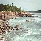 Acadia National Park Seashore by artcascadia