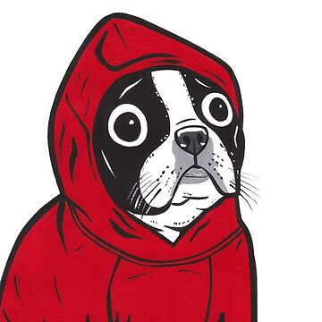 Boston Terrier in a Red Hoodie by turddemon