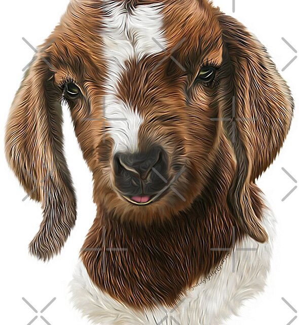 Portrait of a Goat  - Boer Goat Baby Nicklaus  by IconicTee
