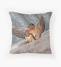 What Goes On in the Barn... Throw Pillow