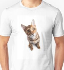 Bengal cat with big eyes T-Shirt