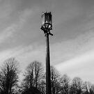 Lamppost by Tony Blakie