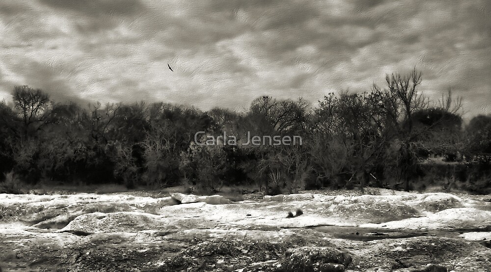 Above The Treeline  2   ( BoneYard Series ) by Carla Jensen