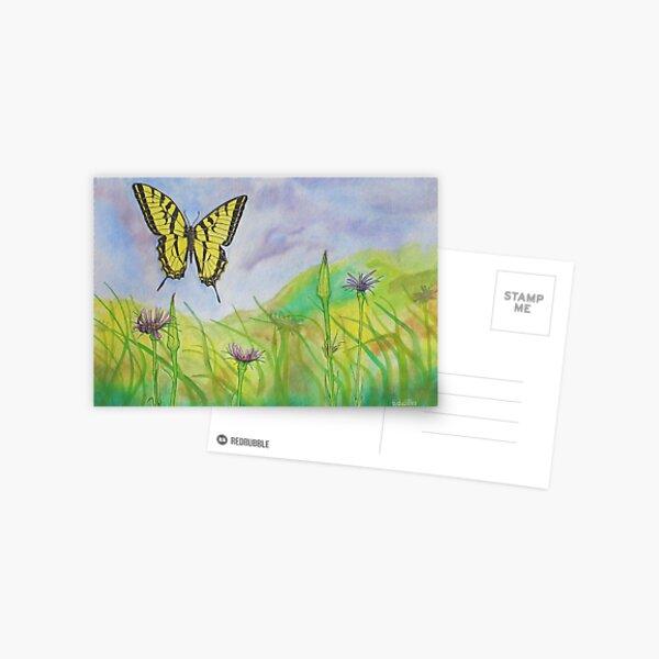 Western Slope Butterfly Postcard