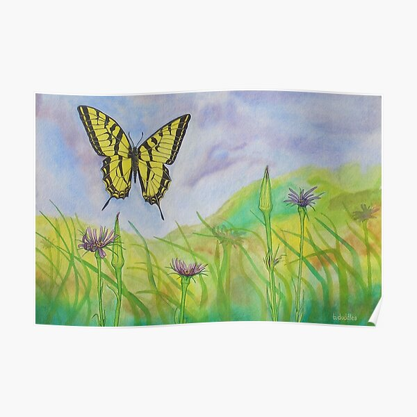 Western Slope Butterfly Poster