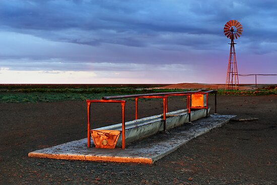 Cattle Trough - Hay Plains by Darren Stones
