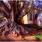 One tree to bind them all by gavolo