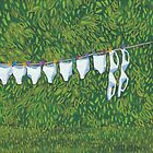 Laundry Day by Emily Ryan