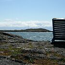 A Chair to View by AnnDixon