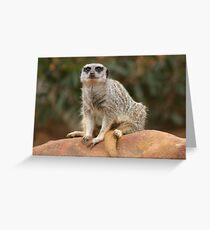 Comfy Chair Greeting Card